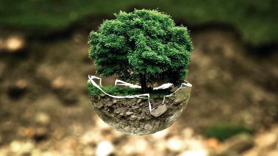 Quels sont les différents types d'isolants écologiques?